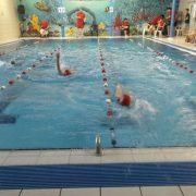 Erfolgreiches Kükenschwimmen