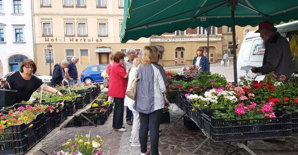 Blumenmarkt 18