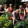 Besuch im Kräutergarten