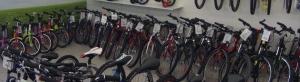 Zweirad-Hoffmann 2